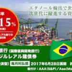 世界銀行(国際復興開発銀行)ブラジルレアル建債券(円貨決済型)毎月利払債2017年6月28日満期