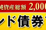 【投資信託】野村インド債券ファンド(毎月分配型)〜野村アセットマネジメント